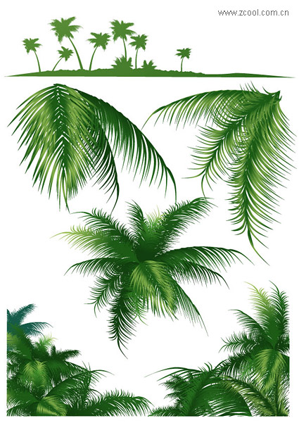 Coconut Trees Series Vector Material Download Free Vector 3d