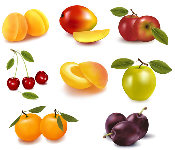 eight kinds of fruits and vector materialdownload free