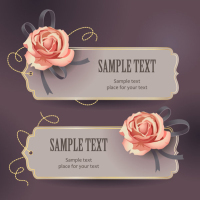 Vintage Roses Card text template vector material -3