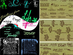 Relatively rare pieces of the English text brushes -18