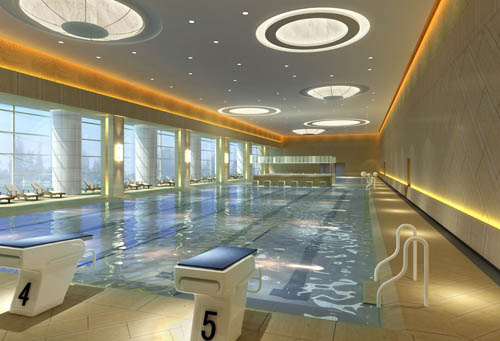 Gymnasium 1 Swimming Pool Sports Commercial Space Model Free Download
